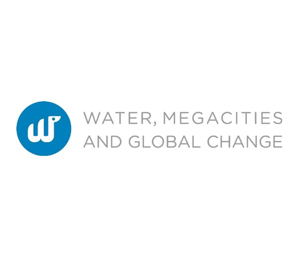 Water megacities and global change